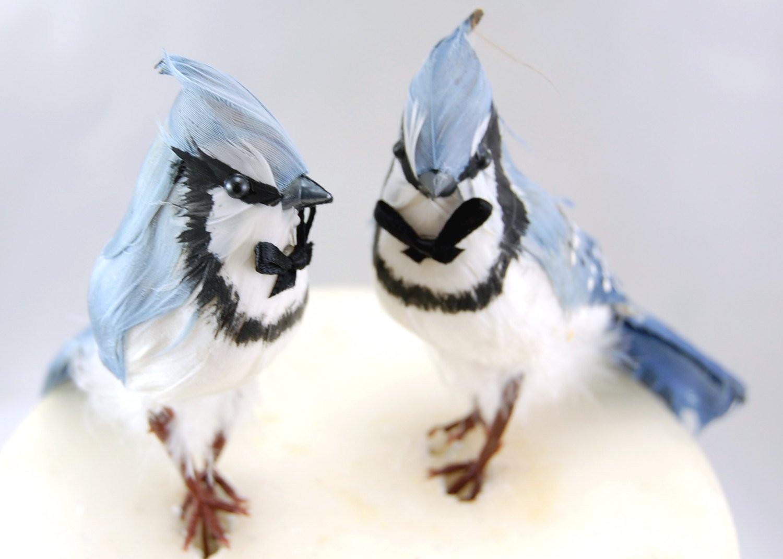 Blue Jays Cake Topper: Gay Wedding Cake Topper in Cornflower and White