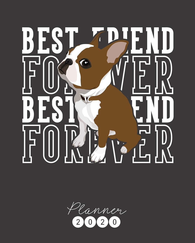 Best Of Boston 2020.Planner 2020 Red Boston Terrier Weekly Planner Monthly