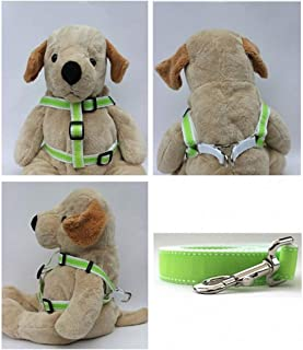 "product image for Diva-Dog 'Preppy Lime' Custom 5/8"" Wide Dog Step-in Harness with Plain or Engraved Buckle, Matching Leash Available - Teacup, XS/S"
