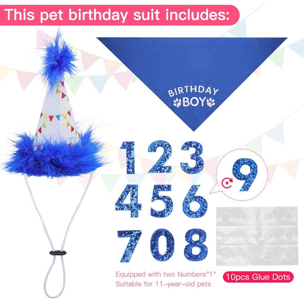 BINGPET Dog Birthday Bandana Boy Scarf and Reusable Dog Birthday Hat with 0-8 Figures