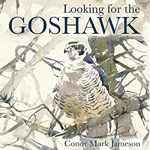 Looking for the Goshawk Audiobook