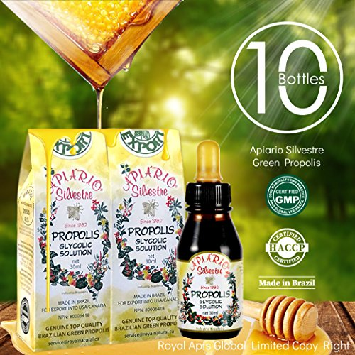 Official Distributor - 10 Bottles of Apiario Silvestre Brazilian Green Bee Propolis Liquid-Alcohol Free, Wax Free, Sugar Free by APIARIO SILVESTRE
