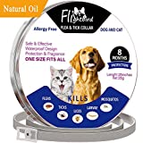 Dog Flea Treatment Collar - Flea and Tick Collar,Flightbird 8 Months Protection Natural Plant Extracts Waterproof Safe & Hypoallergenic Allergy Free Flea and Tick Prevention Lice Remove Control Collar 25 inches For Dogs and Cats