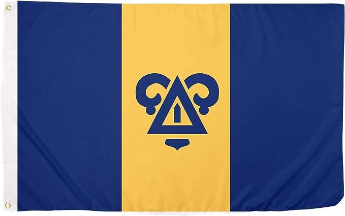 Delta Upsilon 80s Decade Flag Use as a Banner 3 x 5 Feet