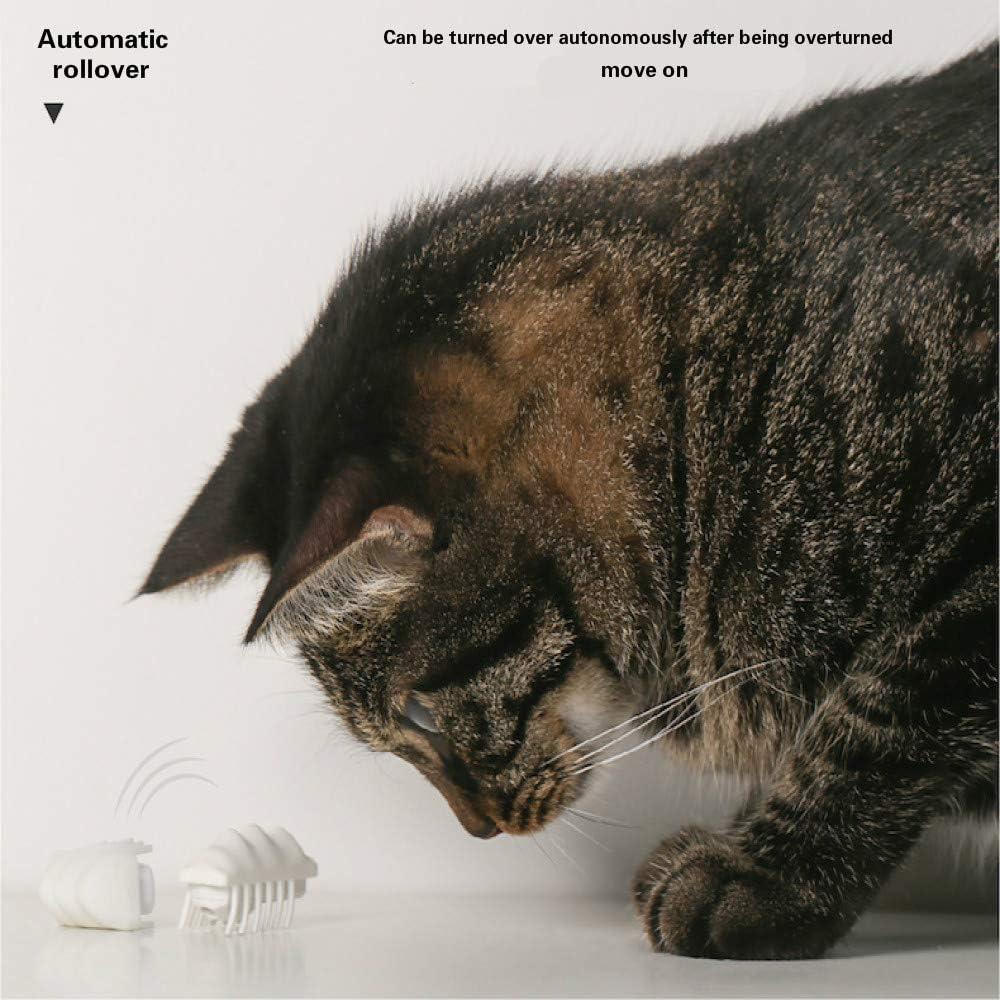 forme di insetti giocattoli interattivi per gatti inseguendo giocattoli elettrici per gatti Giocattoli intelligenti per gatti regali interni