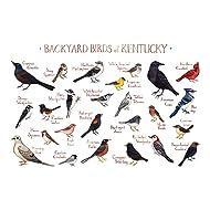 Backyard Birds of Kentucky Field Guide Art Print