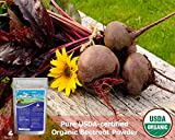 Zen Principle Organic Beetroot Powder. USDA Certified Organic.