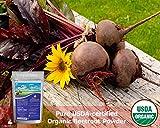 Zen Principle Organic Beetroot Powder. USDA Certified Organic. Nitric Oxide Blood Circulation