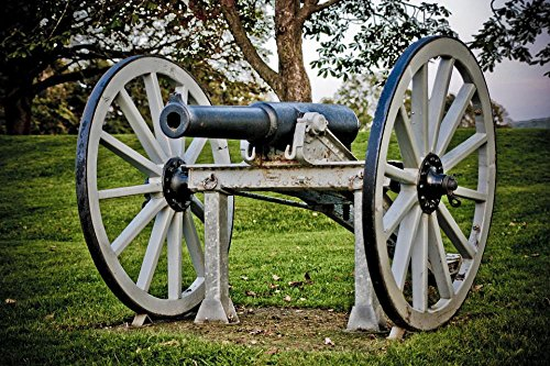 LAMINATED 36x24 inches Poster: Cannon Relic Historical Nova