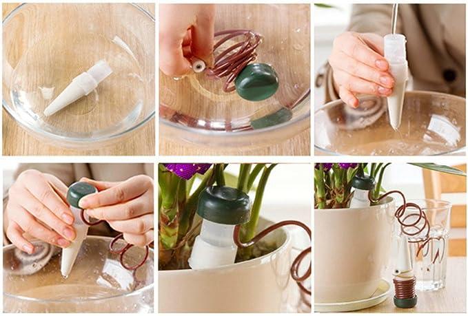 adhere to Fly Indoor automático Sistema de Riego Para Planta Agua Especialista aspersor cerámica muestras houseplant pinchos Self Watering: Amazon.es: ...