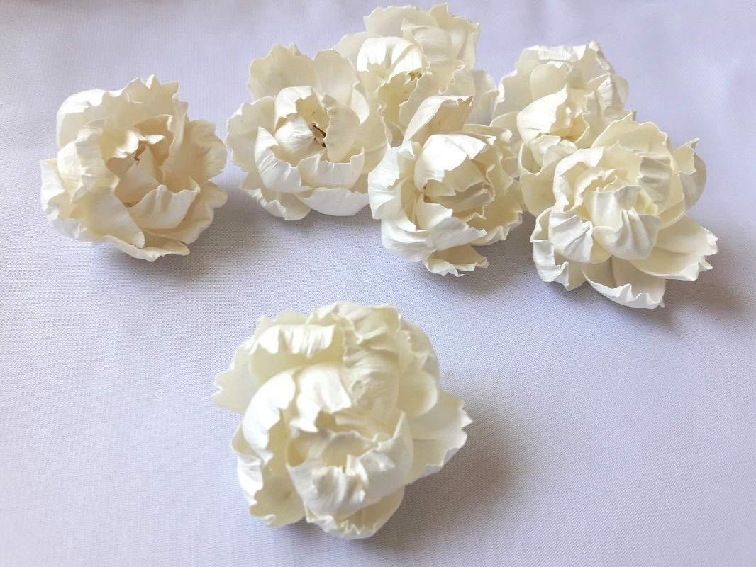Jikkolumlukka 25 pcs. Peony Flowers Sola Balsa Wood Diffuser Craft Decor Home Fragrance Bouquet Bride Gift 5Cm by Jikkolumlukka