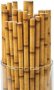 Kicko Bamboo Paper Straws - Pack of 24-7.75 Inch Biodegradable Drinking Straws - Eco-Friendly - for Party Favors