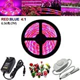 LED Plant Grow Strip Light with Power Adapter,Full Spectrum SMD 5050 Red Blue 4:1 Rope Light for Aquarium Greenhouse Hydroponic Pant Garden Flowers Veg Grow Light (2M)