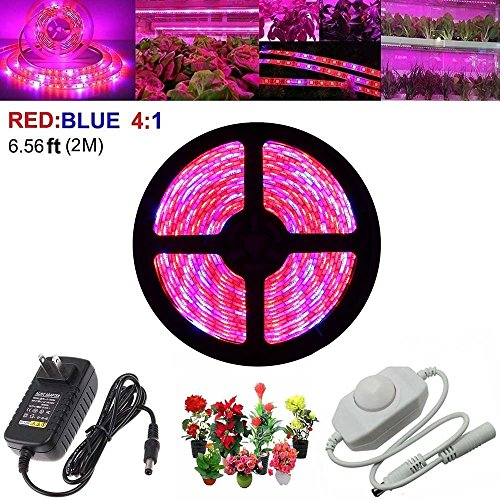 LED Plant Grow Strip Light with Power Adapter,Full Spectrum SMD 5050 Red Blue 4:1 Rope Light for Aquarium Greenhouse Hydroponic Pant Garden Flowers Veg Grow Light (2M) by LEHOU