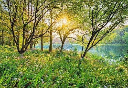 Komar 8 524 368 X 254 Cm National Geographic Spring Lake
