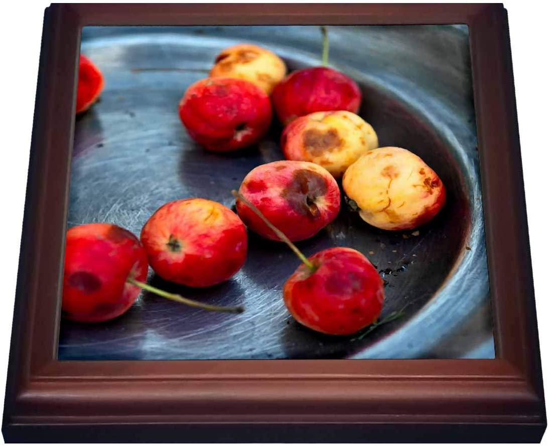 3dRose Still Life of red, Yellow Crab Apples on a Grey Metal Plate - Trivets (trv_325872_1)