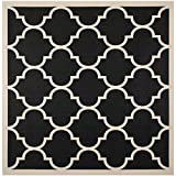 Safavieh Courtyard Collection CY6914-266 Black and Beige Indoor/Outdoor Square Area Rug (5'3″ Square) Review