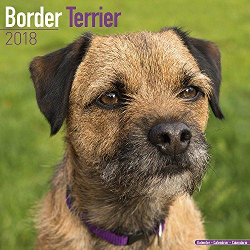 Wall Border Book - 7