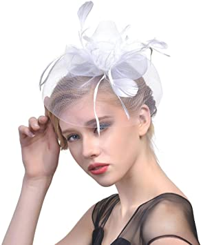 Chapeau de Femme Vintage Plume Fascinator Femmes Fascinator Mesh Hat Rubans et Plumes Chapeau de f/ête de Mariage Fleur Voile Chapeau pour Mariage Cocktail F/ête Banquet