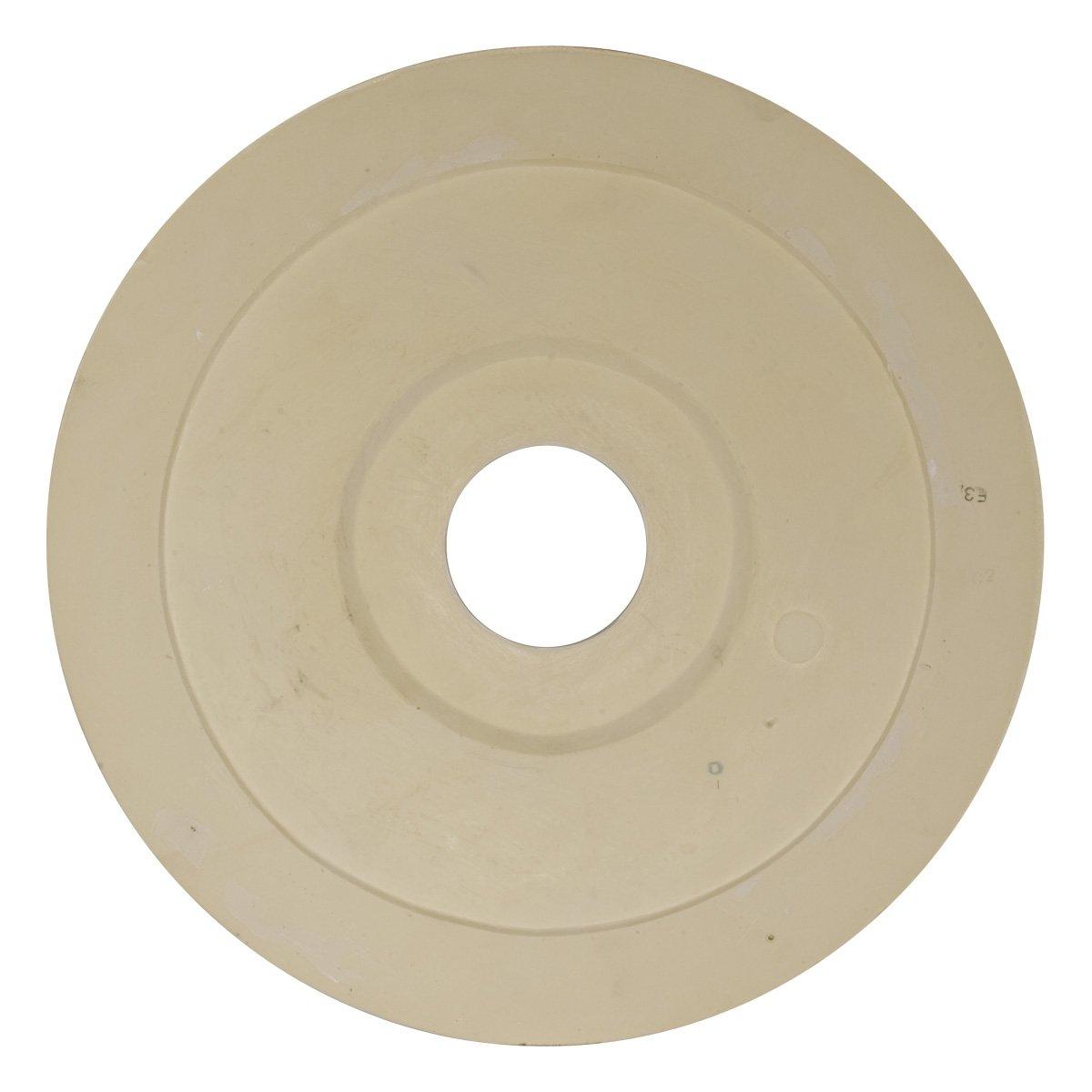 Amazon.com: Ekena Millwork CM18DI Ceiling Medallion Primed: Home ...