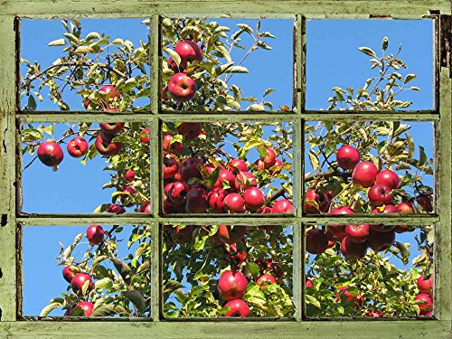 Window View Wall Mural Apple Tree against Clear Blue Sky Vintage Style Wall Decor Peel and Stick Adhesive Vinyl Material