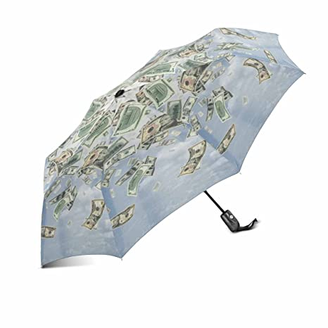 3e40c3d97f4c Amazon.com: InterestPrint Funny Wealth Idea the Rain Of Dollars ...