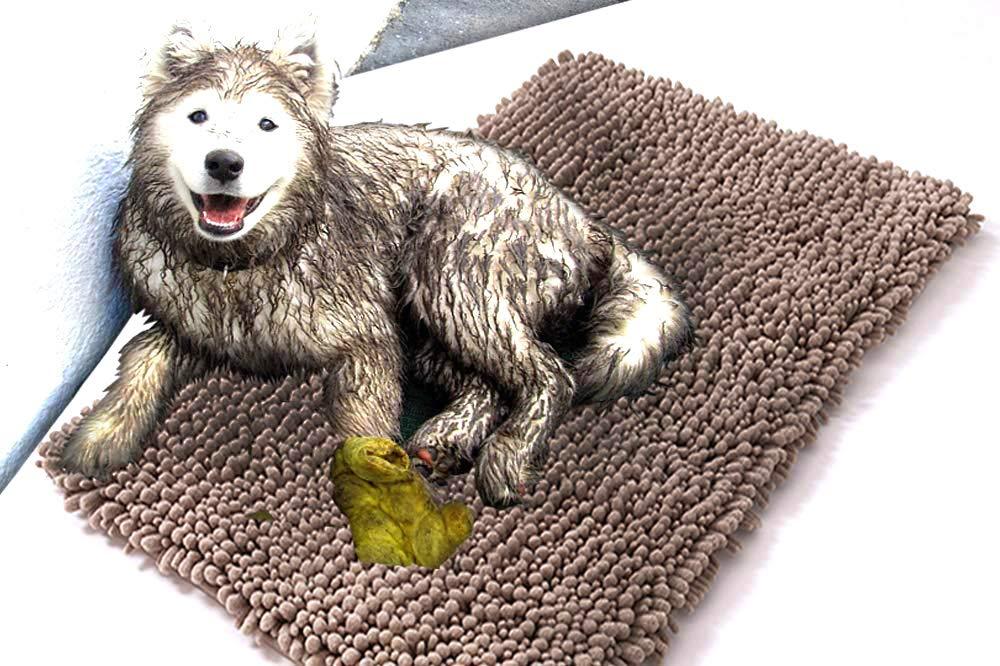 Amazon.com: Perro alfombra barro última intervensión ...