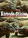 Komodo dragon. Feast and famine