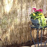 Lewis Hyman 4474896 Peeled and Polished Reed Fence, 4-Foot High by 8-Foot Long