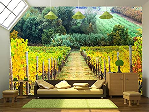 wall26 - Beautiful Autumn Landscape with Vineyards. Tuscany, Italy - Removable Wall Mural | Self-adhesive Large Wallpaper - 100x144 (Tuscany Mural)