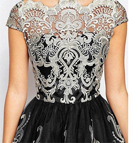 696349ba1763 ... SHUNLIU 2017 Damen Retro Kleid Elegant Festlich mit Bestickt Gazerock  Spitzenkleid Partykleid Vintage A-Linie ...