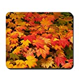 CafePress - Maple (Acer Japonicum Vitifolia) Leaves - Non-slip Rubber Mousepad, Gaming Mouse Pad