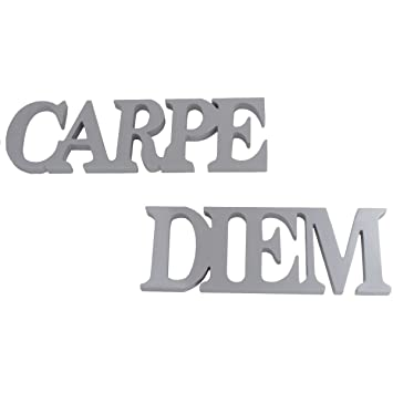 Wall Letters Wall Decor Wall Art Carpe Diem Silver
