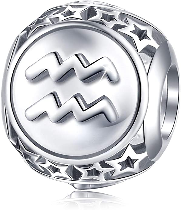 Zodiac Sign Aquarius Astrology Astrological Bead Hanger Ornament
