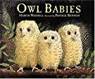 Owl Babies, by Martin Waddell