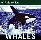 Whales, Seymour Simon, 0060877111