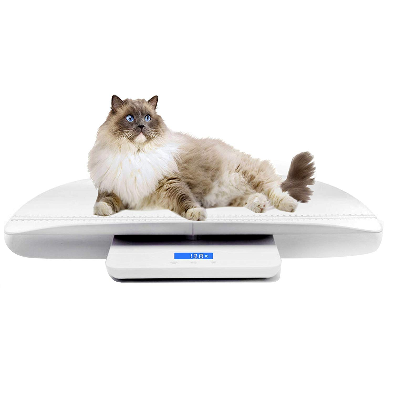 Multi-Function Digital Pet Scale to Measure Dog and Cat Weight Accurately Up to 220 Lbs, Precision at ± 10g, Blue Backlight, Especially for Pregnant Cats and Baby Pets (60 cm) by TeaTime (Image #7)