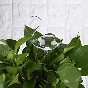 Automatic Watering Device, Vacation Houseplant Plant Pot Bulbs Garden Waterer Flower Water Drip Irrigationdevice Slow Release for Indoor or Outdoor Houseplants (Swan Shape, Pack of 2)