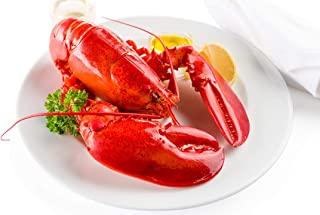 product image for Maine Lobster Now: 6 Pack of 1.5 lb Live Maine Lobster