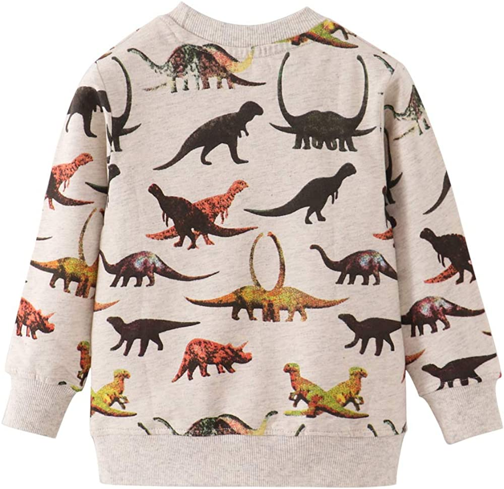 Boys Sweatshirts Dinosaur Pullover T-Shirts Toddler Cotton Cute Tops Tee Long Sleeve Outdoor Outfit: Clothing