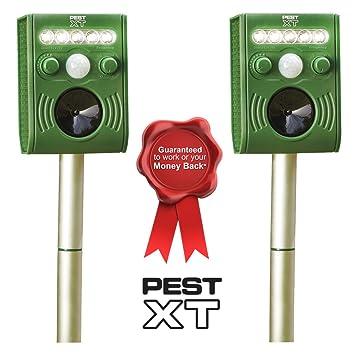 Plagas XT Funciona con energía Solar ultrasónico Flash Sensor de Movimiento Activado Pest Repeller – Repelente