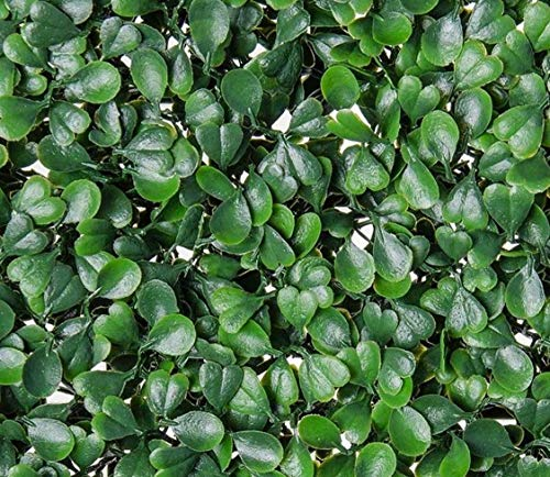 Artificial Boxwood Hedge, Faux Greenery Wall, Privacy Hedge Screen, UV Protected Faux Greenery Mats, Boxwood Wall, Suitable for Both Outdoor or Indoor (20x20 Inch DarkG_12pc)