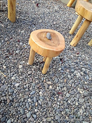 Childrens Stool / Mini Table Naturally Unique Cypress Tree Trunk Handmade Coffee Table - Log Rustic Chilean - Free Shipping (Pine Tree Natural Trunk)
