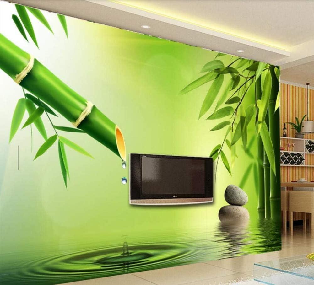 Papel Pintado Pared 3D Papel Pintado Murales Bambú Verde Que Gotea Agua De Manantial Dormitorio Sala Tv Fondo Decoración Fotomurales 250cmx175cm: Amazon.es: Bricolaje y herramientas