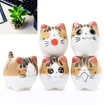 Cat Succulent Planter - 5 Pack Mini Cat Pots for Small Plants Animal Lovers Home and Office Desk Decoration: Garden & Outdoor