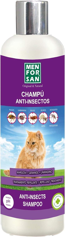 MENFORSAN Champú Anti-Insectos con Margosa, Geraniol Y Lavandino - Gatos 300 ml: Amazon.es: Productos para mascotas