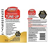 Gumout 510011 Multi-System Tune-Up, 16