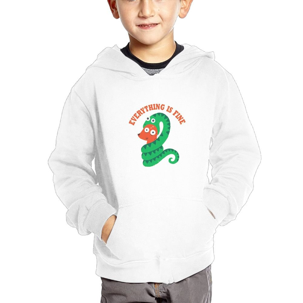Nklnaln Everything Is Fine Boy Girl Hoodie Pocket Pullover.