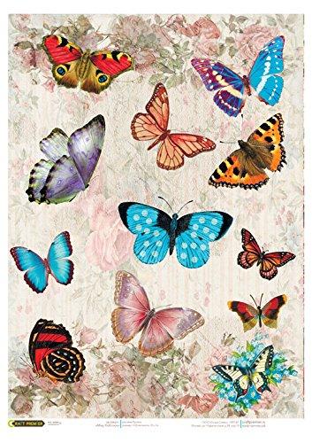 Carta di riso per decoupage. Multi-color farfalla luminosa ...
