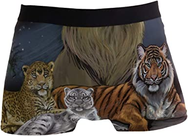 Black Panther Tiger Boys Brief Underwear Breathable Soft Boxer Briefs Underpants for Kids Youth Men 2-Pack